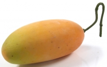 Decorative fruit - mango